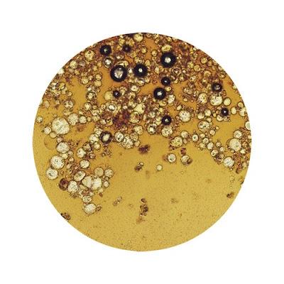 大好きな飲み物を顕微鏡で見ると03