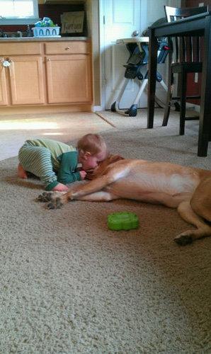 息子と愛犬の友情16
