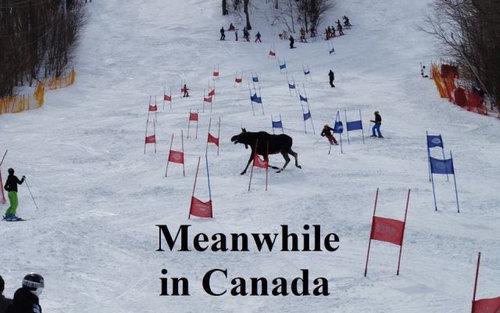 さすがカナダ18