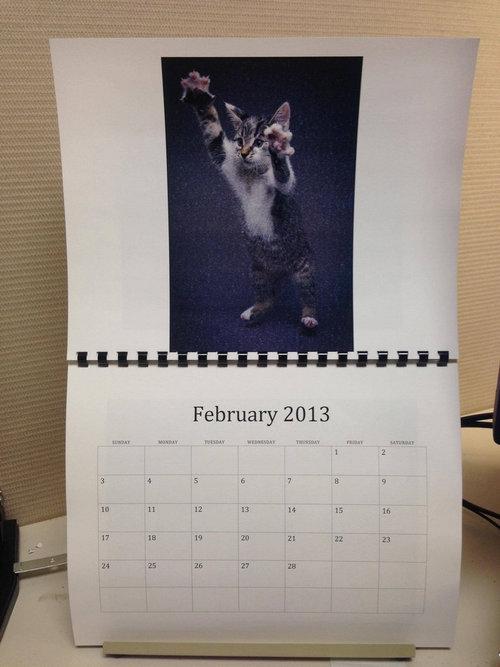 猫のカレンダー02