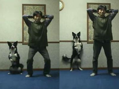 ヒンズースクワットをする犬と人