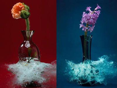 生け花と花瓶─破壊の美学TOP