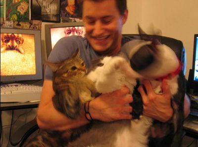 猫と犬03