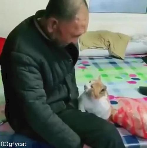 猫とおじいちゃん、とっても仲良し01