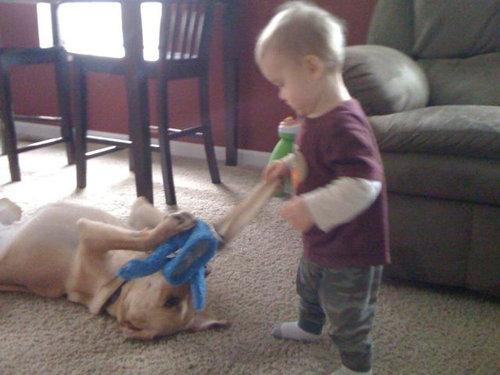 息子と愛犬の友情11