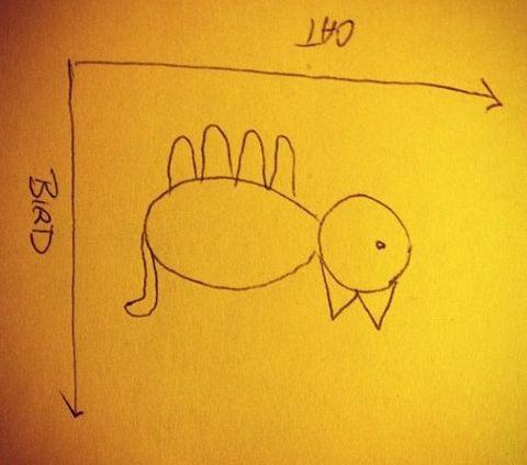 鳥のグラフ03
