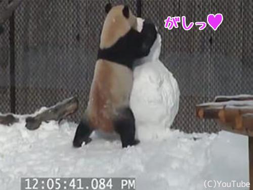 パンダVS雪だるま00