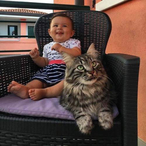 女の子を守る猫09