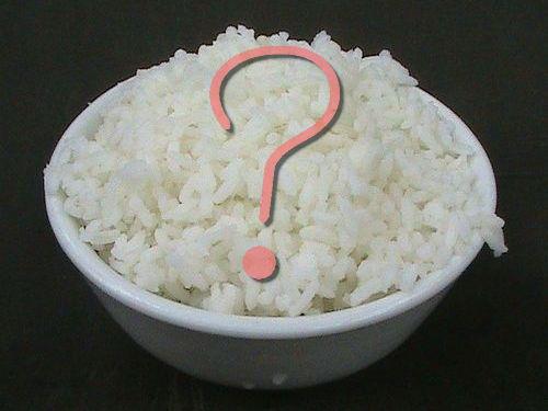 欧米人が炊飯器00