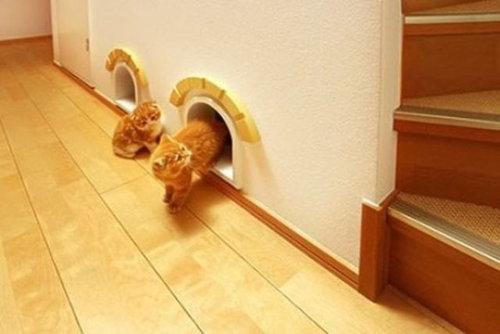 猫の家具20