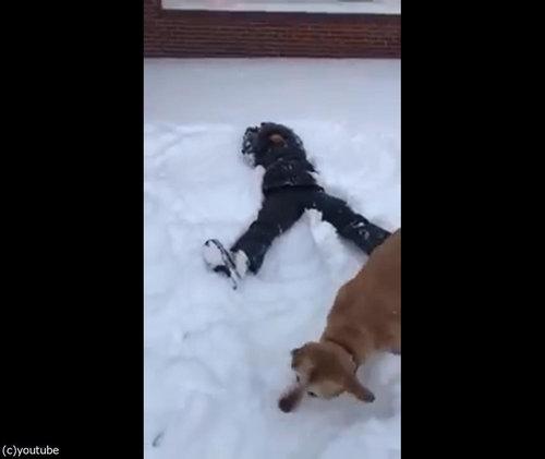 犬の目の前で雪に寝転がる04