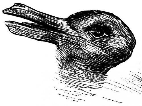 「ウサギとアヒルのだまし絵」のかわいい実写板00