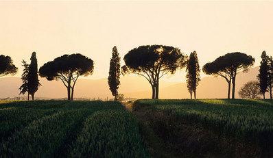 イタリア・トスカーナ地方の絶景07