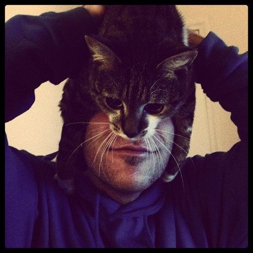 猫でバットマン02