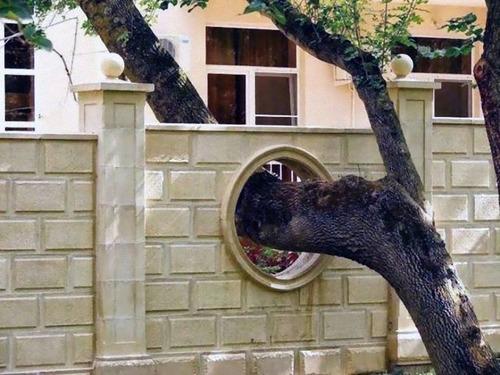 家を建てるために木を切らなかった人々05