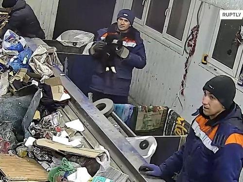 ロシアのゴミ処理施設で命拾いした猫、地元の副大臣に出世する02