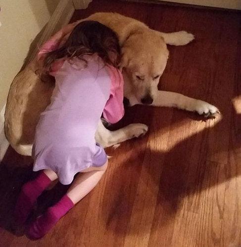 犬を飼うべき理由28