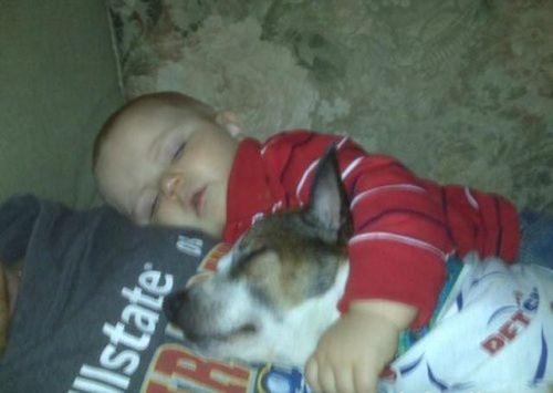 ペットと睡眠05