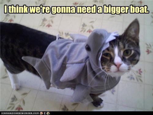 サメ猫10