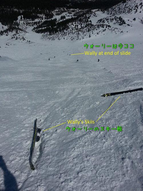 スキーが速いウォーリー01