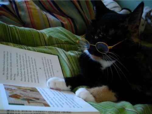 読書猫09
