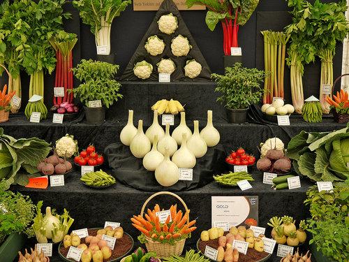 野菜の陳列アート09