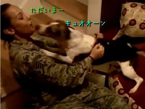 女性兵士と犬00
