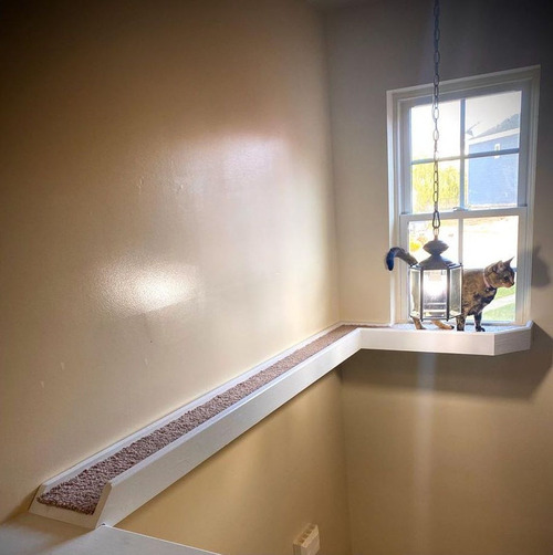 猫に窓までのブリッジ02