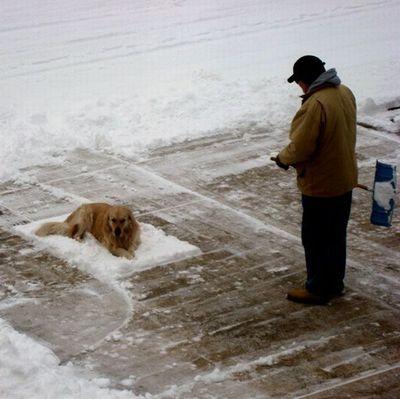 雪かきで困った05