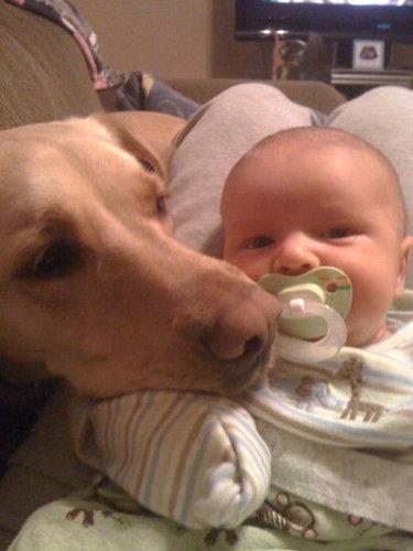 息子と愛犬の友情01