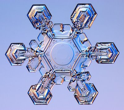 雪の結晶13