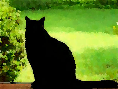 赤裸々猫00