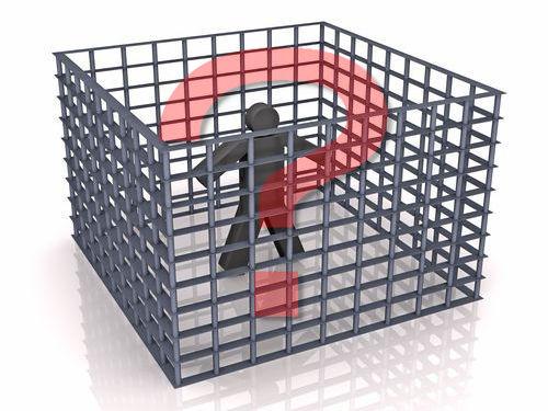 猫の刑務所00