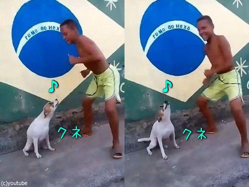 ブラジルは犬だってカーニバル00