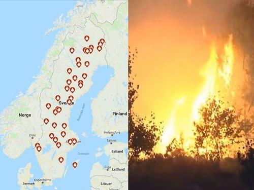 スウェーデンで史上最悪の山火事00