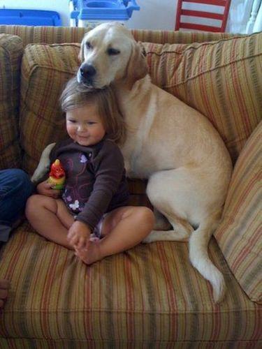 ペットと赤ちゃん01