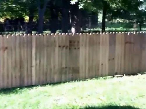 犬用のフェンスに誤算02