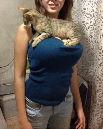 猫とお姉さん01