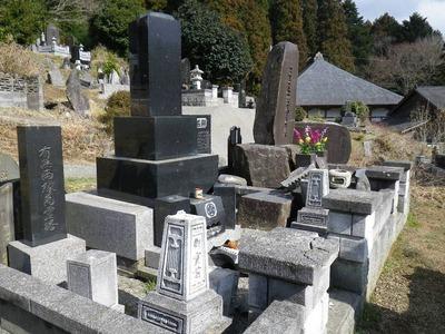親類の家のお墓(左を向いている)