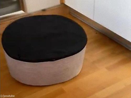 犬がベッドを逆さにすると00