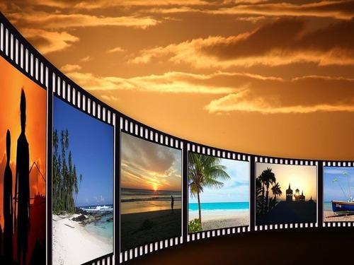 どの映画を5回以上見て楽しめましたか