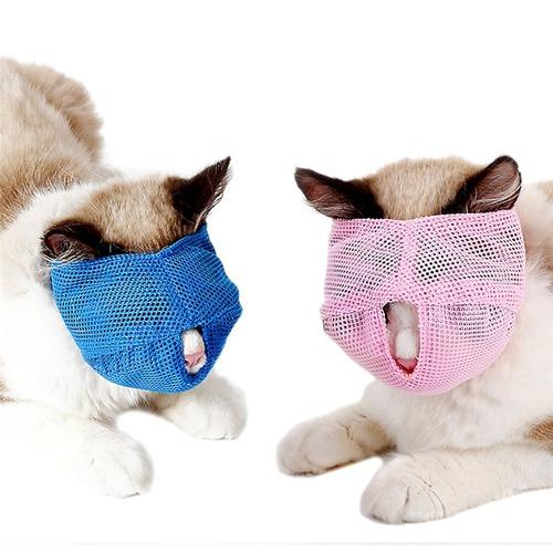 中国で売られている謎の猫グッズ05