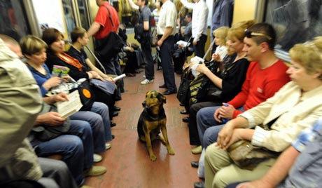 ロシアの地下鉄07