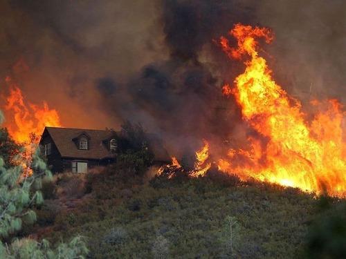 カリフォルニア北部の山火事で燃えている木00