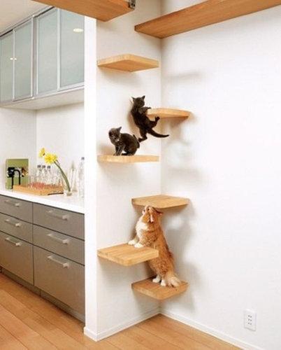 猫の家具26