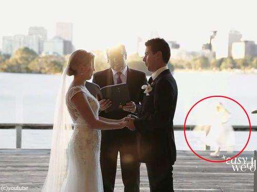 結婚式でフラワーガールがクレイジーになるとき00