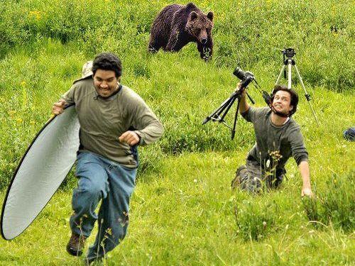 野生の動物写真の撮影02