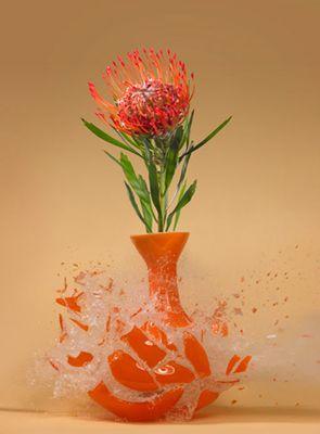 生け花と花瓶─破壊の美学05