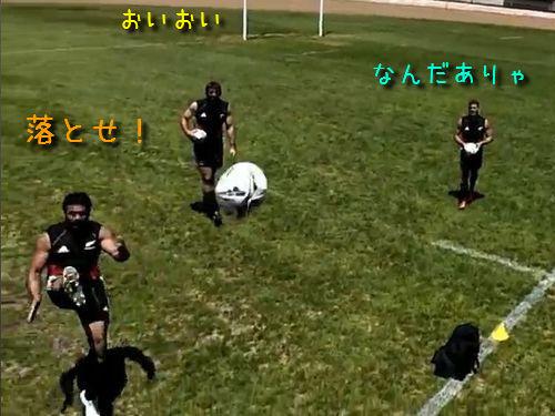 ラグビーの練習をラジコンで偵察