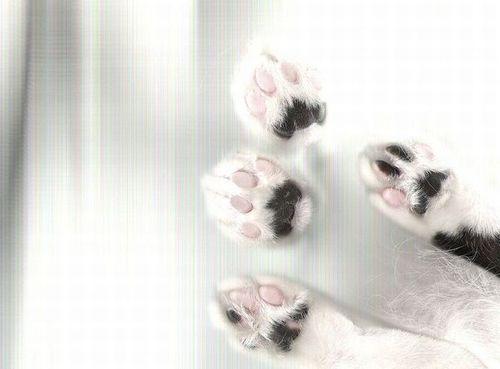自然に見えるパンチラ総合スレPart.9 改 [無断転載禁止]©bbspink.comYouTube動画>1本 ->画像>4485枚